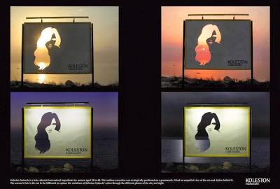Koleston Naturals Change Billboard 2007