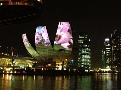 iLight Marina Bay 2012 Garden of Light Hexagon 1