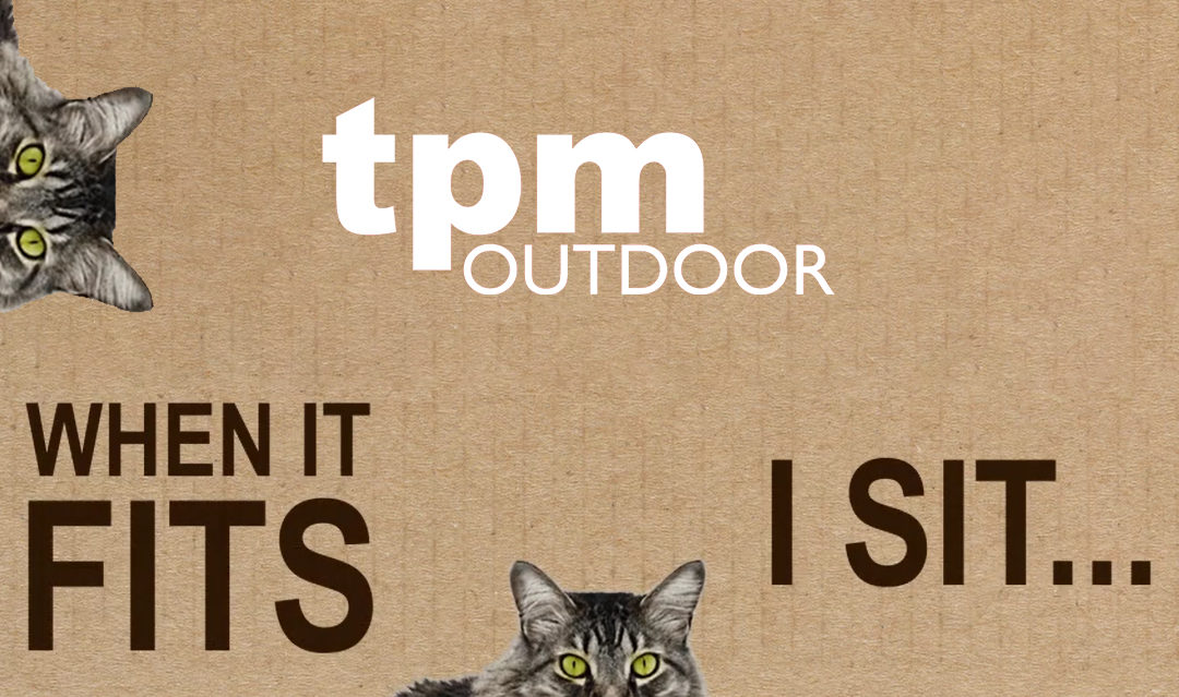 """""""Catvertising"""" is the use of Cats in Advertising"""